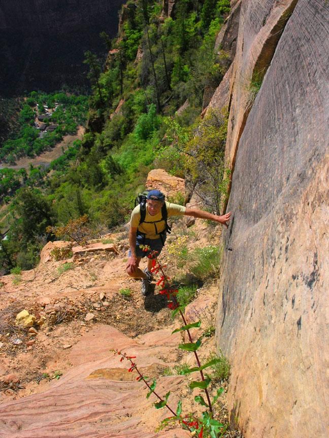 Lady Mountain Photo / lady-mountain-zn.jpg