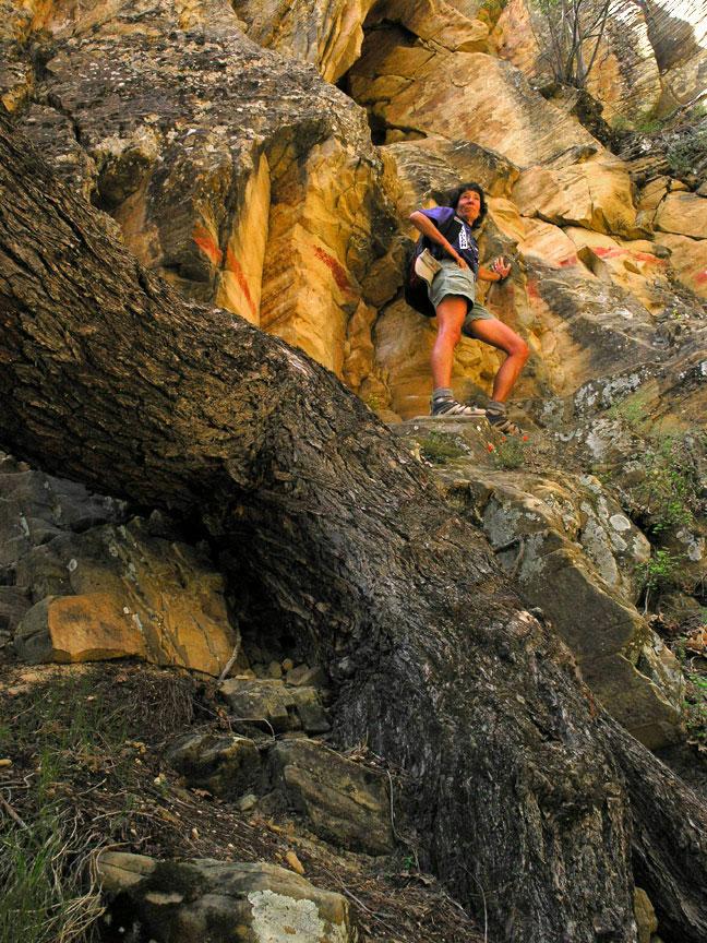 Lady Mountain Photo / lady-mountain-zw.jpg