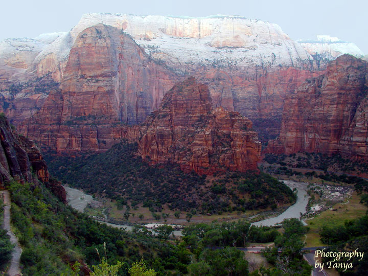 Big bend organ and angels landing as viewed at the end of the east