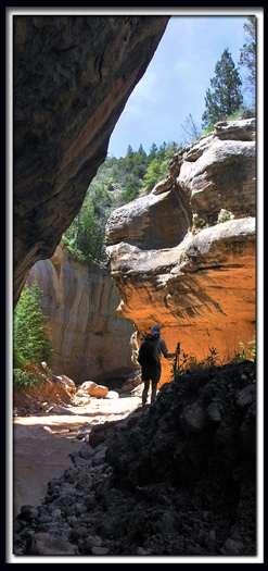 Ashdown Gorge - Rattlesnake Creek - Cedar Breaks National Monument