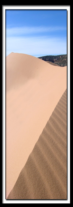 Pictures: Coral Pink Sand Dunes