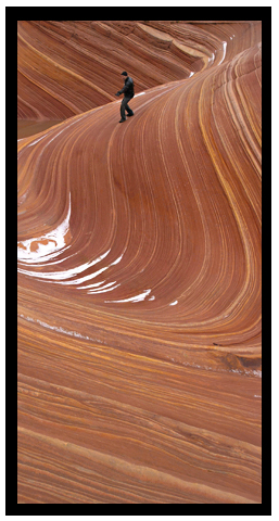 The Wave at Coyote Buttes