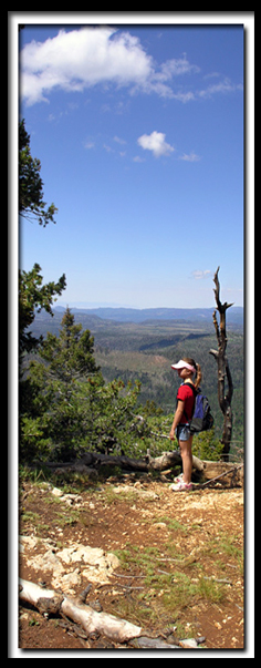 Virgin River Rim Trail on Cedar Mountain in Dixie National Forest