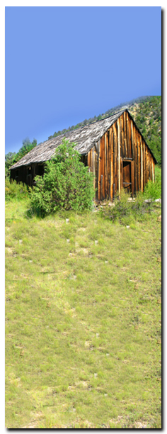 Old Cabin found along the Rattlesnake - Ashdown Creek Route