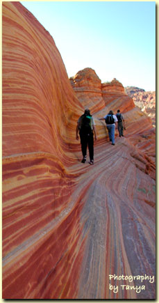 Paria Canyon - The Wave