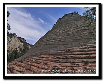 Zion: Checkerboard Mesa