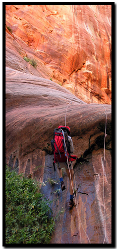 Zion's Ice Box Canyon