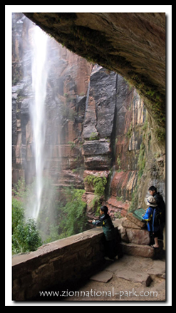 Zion's Weeping Rock Trail