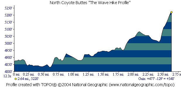 Wave Profile